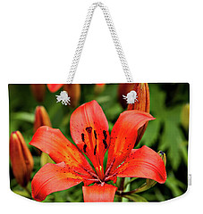 Weekender Tote Bag featuring the photograph Orange Day Lilly Single by Mary Jo Allen