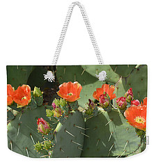 Orange Dream Cactus Weekender Tote Bag by Aimee L Maher Photography and Art Visit ALMGallerydotcom