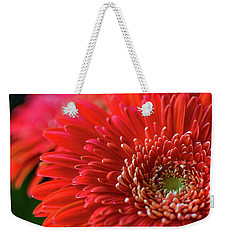 Weekender Tote Bag featuring the photograph Orange Gerbera by Clare Bambers