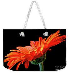Orange Gerbera On Black Weekender Tote Bag
