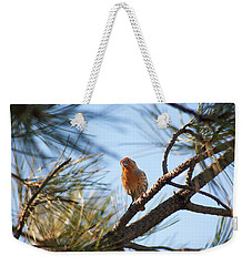 Weekender Tote Bag featuring the photograph Orange House Finch 2 by Marilyn Hunt