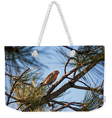 Weekender Tote Bag featuring the photograph Orange House Finch by Marilyn Hunt