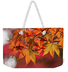 Weekender Tote Bag featuring the photograph Orange Maple Leaves by Clare Bambers
