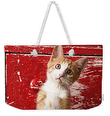 Orange Tabby Kitten In Red Drawer  Weekender Tote Bag