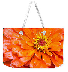 Weekender Tote Bag featuring the photograph Orange Zinnia After A Rain by Jim Hughes