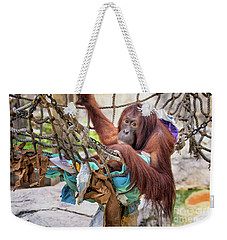 Orangutan In Rope Net Weekender Tote Bag