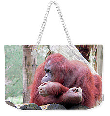 Orangutang Contemplating Weekender Tote Bag