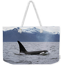 Orca Orcinus Orca Surfacing Weekender Tote Bag by Konrad Wothe