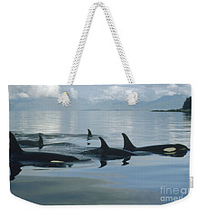 Weekender Tote Bag featuring the photograph Orca Pod Johnstone Strait Canada by Flip Nicklin