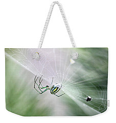 Weekender Tote Bag featuring the photograph Orchard Orbweaver Spider  by Trina Ansel
