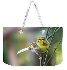 Orchard Oriole Weekender Tote Bag