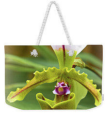 Weekender Tote Bag featuring the photograph Orchid Allure by Richard Goldman