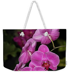 Weekender Tote Bag featuring the photograph Orchids Alicia by The Art of Alice Terrill