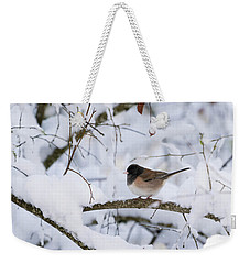 Weekender Tote Bag featuring the photograph Oregon Junko In Snow by Brian Bonham