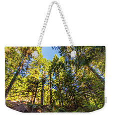 Weekender Tote Bag featuring the photograph Oregon Trees by Jonny D