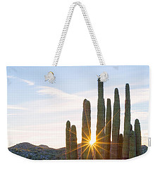Weekender Tote Bag featuring the photograph Organ Pipe Cactus by Patricia Davidson