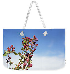 Weekender Tote Bag featuring the photograph Organic Handpicked Home Orchard Raspberries,blackberries From Bu by Jingjits Photography