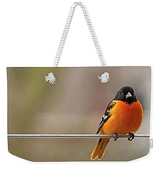 Oriole On The Line Weekender Tote Bag