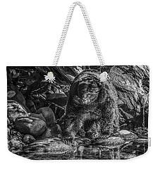 Oservant Black Bear  Weekender Tote Bag