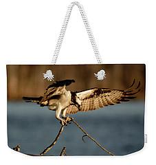 Osprey 2017-3 Weekender Tote Bag