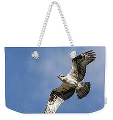 Osprey 2017-3 Weekender Tote Bag by Thomas Young