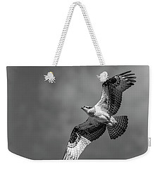Osprey 2017-4 Weekender Tote Bag by Thomas Young
