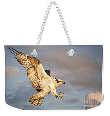 Osprey  Weekender Tote Bag by Alice Cahill