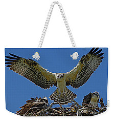Osprey Chick Ready To Fledge Weekender Tote Bag