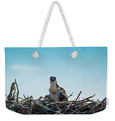 Osprey Chick Smiles For The Camera Weekender Tote Bag by Jeff at JSJ Photography