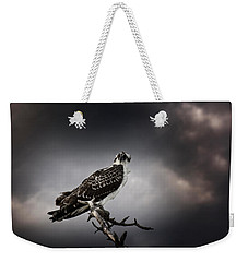 Weekender Tote Bag featuring the photograph Osprey by Chrystal Mimbs