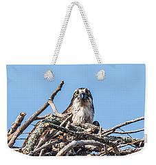 Osprey Eyes Weekender Tote Bag