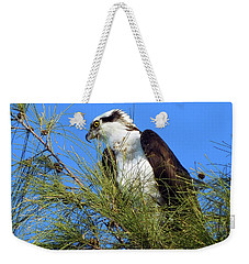 Osprey In Tree Weekender Tote Bag