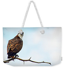Weekender Tote Bag featuring the photograph Osprey Out On A Limb by AJ Schibig