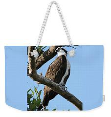Weekender Tote Bag featuring the photograph Osprey - Perched by Jerry Battle