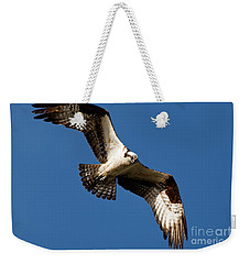 Weekender Tote Bag featuring the photograph Osprey - Soaring by Sue Harper