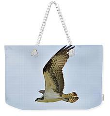 Osprey Upswing Weekender Tote Bag