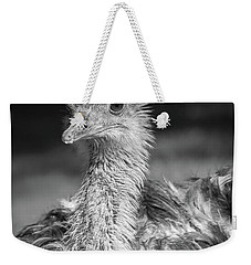 Ostrich Black And White Weekender Tote Bag