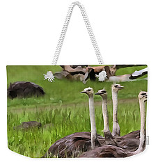 Ostriches In Africa Weekender Tote Bag by Dan Sproul