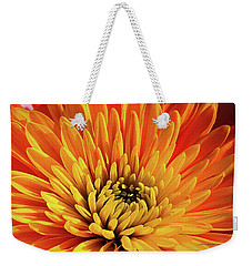 Weekender Tote Bag featuring the photograph Other Beautiful Things by Jessica Manelis
