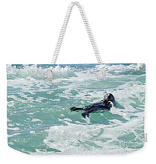 Otter At Montana De Oro Weekender Tote Bag