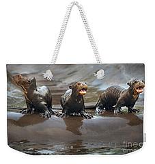 Otter Pup Triplets Weekender Tote Bag