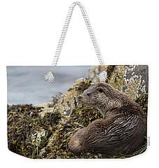 Otter Relaxing On Rocks Weekender Tote Bag
