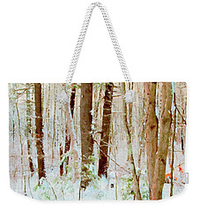 Our Backyard After The Snow Weekender Tote Bag