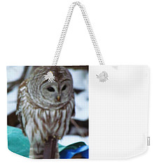 Weekender Tote Bag featuring the photograph Our Own Owl by Betty Pieper