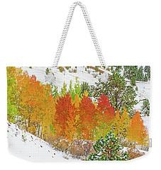 Our Winter Begins Around Mid October.  Weekender Tote Bag by Bijan Pirnia