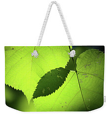 Overlapping Leaves In Sun Weekender Tote Bag by Mary Bedy