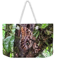 Owl Butterfly On A Tree Weekender Tote Bag