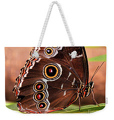 Owl Butterfly Portrait Weekender Tote Bag