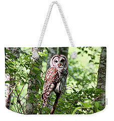 Owl In The Forest Weekender Tote Bag by Peggy Collins