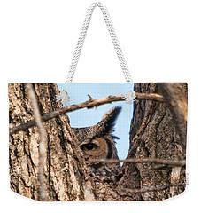 Owl Peek Weekender Tote Bag by Steve Stuller